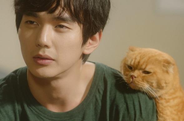 想像猫 韓国ドラマ 感想 視聴率