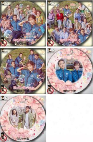 恋の花が咲きました dvd レンタル
