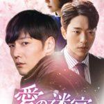 愛の迷宮トンネルDVDラベルレンタル開始日・発売日は?無料動画がお得!